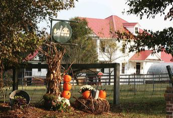 Experience farm living without getting your hands dirty at Old McCaskill's Farm.